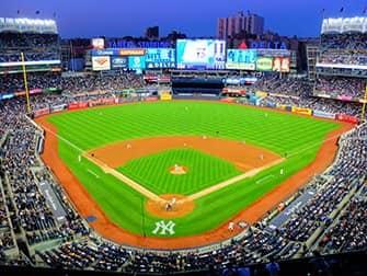 뉴욕 양키스 티켓 - 구장