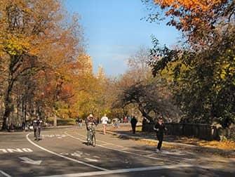 뉴욕 자전거 대여 - 센트럴파크 가을