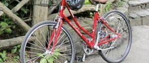 뉴욕 자전거 대여