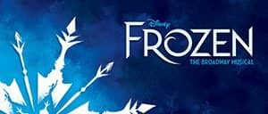 브로드웨이 겨울왕국 티켓