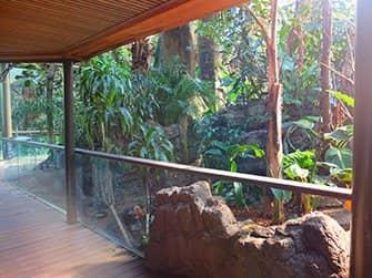 센트럴파크 동물원 티켓 - 열대우림