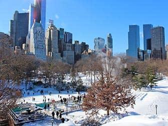 뉴욕의 새해 - 센트럴파크 아이스 스케이트