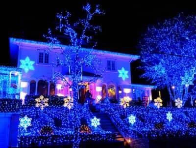 다이커 하이츠 크리스마스 라이트 - 블루 라이트