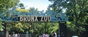 뉴욕 브롱크스 동물원