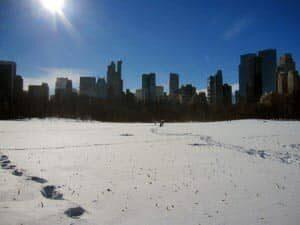 뉴욕 센트럴파크의 겨울